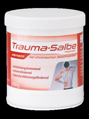 Trauma-Salbe Mayrhofer wärmend-500 g